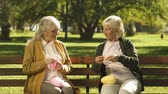 編み : Two happy grandmothers knitting for their grandchildren sitting on bench in park 動画素材