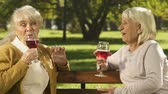 uzun ömürlü : Elderly women drinking wine in park, celebrating holidays together, resting Stok Video