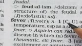 gramática : Fever word definition on english vocabulary page, epidemics outburst vaccination