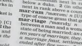 gramíneas : Marriage, word pointed in dictionary, agreement between couple, love and family