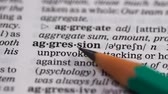 gramática : Aggression word in english vocabulary, hostile attitude, domestic misbehavior