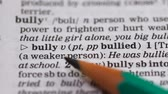 gramática : Bully, word in english vocabulary, person using force to humiliating people