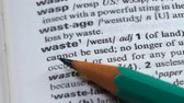 gramatika : Waste meaning in english vocabulary, extensive nature pollution, overconsumption