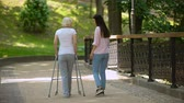 rehabilitasyon : Volunteer walking with elderly woman using walker in hospital park, disability
