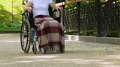 rehabilitasyon : Volunteer walking with disabled patient in wheelchair in park, rehabilitation