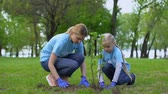 reforestation : Mother and daughter planting bush in park together, environmental volunteering Stock Footage