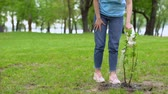 reforestation : Smiling female volunteer watering bush in park looking tree, respect of nature