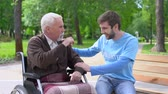 assistent : Aged male in wheelchair and volunteer laughing and joking, having fun together Stockvideo