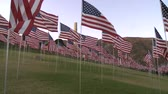 quarto : Time Lapse of American Flags