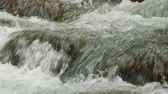 musgo : Slow Motion Water, Stream, Brook
