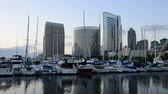 yat : Time Lapse of Marina in San Diego Stok Video