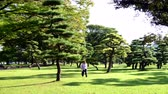 Япония : 4K -Time Lapse of Trees in the Imperial Garden  - Tokyo Japan