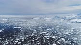 antarktida : Climate Change: Melting Ice. Aerial Flight Over Antarctica Ice Frozen Ocean Water. Drone Overview Shot Of Polar Ocean. Pieces Of Ice, Snow Floating In Cold Water. Wild Untouched Environment. Permafrost. 4k Footage. Dostupné videozáznamy