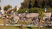 arnavut kaldırımı : Cars on the streets of the resort city, bicycles and a palm tree on the background of a city highway in a resort town, summer, traffic, shallow depth of field Stok Video