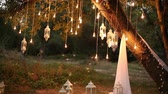 Decorative antique edison style filament light bulbs hanging in the woods, glass lantern, lamp decoration garden at night, magic forest, light bulbs and glow hang on the tree in the forest Vídeos