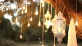 Decorative antique edison style filament light bulbs hanging in the woods, glass lantern