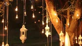 üreme : Decorative antique edison style filament light bulbs hanging in the woods, glass lantern, lamp decoration garden at night, magic forest, light bulbs and glow hang on the tree in the forest Stok Video