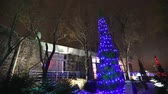 cam : Exterior of modern house or restaurant, the Christmas lights are lit on the trees, in the night sky, camera movement, tree decorated with Christmas lights, tall tree lights, view from below Stok Video
