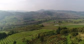 vinařství : Valley with vineyards, Vineyards, a suggestive aerial video over a vineyards in an amazing tuscan landscape, panorama, suny day