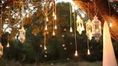 incandescente : Decorative antique edison style filament light bulbs hanging in the woods, glass lantern, lamp decoration garden at night, magic forest, light bulbs and glow hang on the tree in the forest Stock Footage