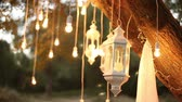 estilizado : Decorative antique edison style filament light bulbs hanging in the woods, glass lantern