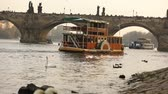 praga : Swans on the Vltava River, Swans in Prague, The sightseeing boat is floating on the Vltava River, view of the old Charles Bridge in Prague Stock Footage