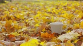 vzít : A cup of coffee with yellow fallen leaves background