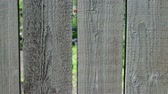 weathered : behind the plank fence