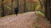 unrecognizable woman and dog walk in park in autumn Stock Footage