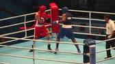 árbitro : boxing match St. Petersburg, Russia, November 21, 2016 Youth World Boxing Championship men heavy 81 kg. Boxing match between: RED- HIGGINS Australia L., BLUE -Montano C., USA Stock Footage