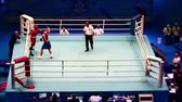 rękawice bokserskie : St. Petersburg, Russia, November 21, 2016 Youth World Boxing Championship men Boxing matchview from above