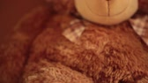 младенчество : brown teddy bear,  soft toy, portrait cute teddy bear