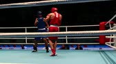 uppercut : St. Petersburg, Russia, November 23, 2016 Youth World Boxing Championship men, attack boxing