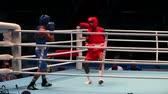 uppercut : St. Petersburg, Russia, November 23, 2016 Youth World Boxing Championship men 64 kg  Boxing match RED - Lescaille Sifontes D., Cuba, BLUE-Schiopu N., Romania. Stock Footage