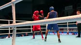 fäuste : boxing match close to St. Petersburg, Russia, November 21, 2016 Youth World Boxing Championship  men heavy 69 kg. Boxing match between: RED-. POWELL M. USA,  BLUE - YERNANDEZ MARTINEZ M. VENEZUELA