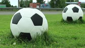 sports concept : big football balls on a green lawn