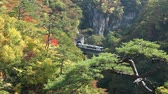 Train running out from tunnel during autumn season in Naruko valley, Naruko Onsen City, Japan.