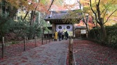 KYOTO, JAPAN - NOVEMBER 27: Japanese people visit Komyo-ji Temple on November 27, 2012 in Kyoto, Japan. The Komyo-ji Temple is one of the most beautiful autumn foliage scenic site in Kyoto.