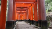 Pathway under tunnel of Torii gate at Fushimi Inari Shrine in Kyoto, Japan Vídeos