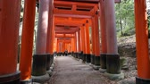 A man walking on pathway under tunnel of Torii gate at Fushimi Inari Shrine in Kyoto, Japan