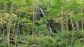Kudan waterfall Waterfall with nine stairs in Oirase stream valley, Aomori prefecture, Japan