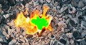 planoucí : Heart burns down in fire, symbol of burnout relationship. Green screen conceptual footage with copyspace Dostupné videozáznamy