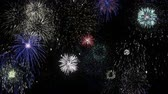 ziyafet : Colorful firework lights in the night sky Stok Video