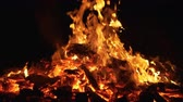 Wildfire at night in close-up Stock Footage