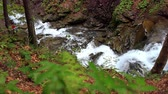 bystřina : Waterfall mountain landscape at spring. River flowing in mountain area. Forest waterfall in mountain. Deep ravine with murmuring river. Beautiful landscape with river stream in deep forest Dostupné videozáznamy