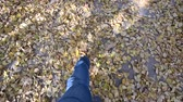 cores vibrantes : Mens feet in blue jeans and gray sports sneakers on autumn asphalt with yellow fallen leaves. First-person view. Stock Footage
