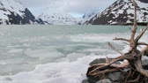 Ice chunks on Portage lake in Alaska on a windy winter day Stock Footage