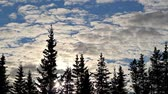 nebe : Timelapse with interesting clouds and spruce. Dostupné videozáznamy