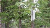 Wind chimes blowing in the wind with spruce trees Stock Footage