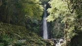 mancha : Scenery of the Yoro falls in Gifu, Japan